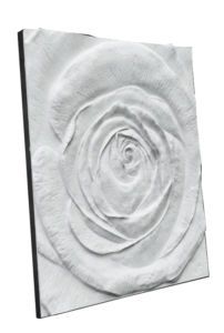 Panel 3D Rose